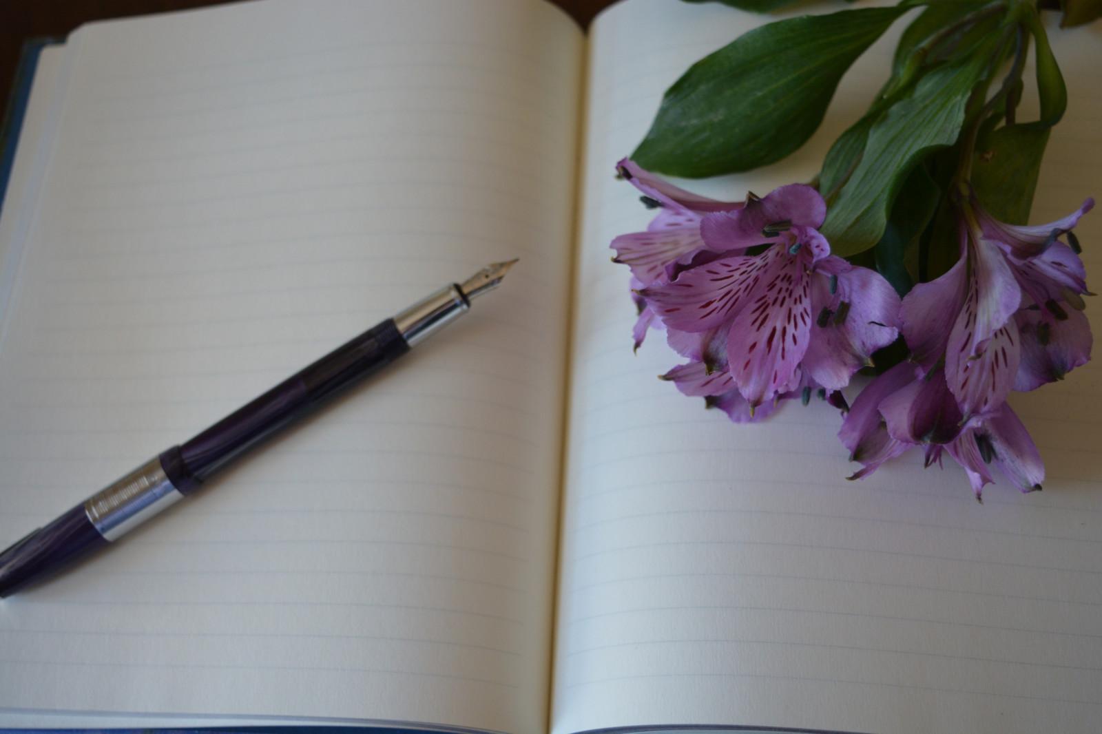sun on pen